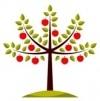 برای خرید نهال درختان میوه دار کلیک کنید