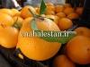 نارنگی پر