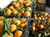 نارنگی آبدار پر